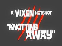 ArtOfZoo Vixen Knotting Away